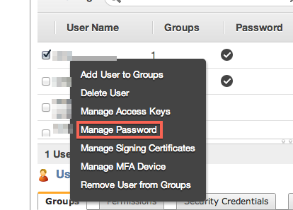 IAM Manage Password